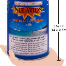 Inulation_sized